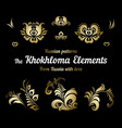 a set of russian gold khokhloma painting vector image