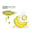 banana hand drawn watercolor fruit on white vector image vector image
