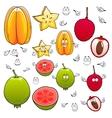 Cartoon carambola lychee and apple guava fruits vector image vector image