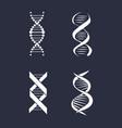 collection dna deoxyribonucleic acid chain logo vector image