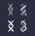 collection of dna deoxyribonucleic acid chain logo vector image vector image