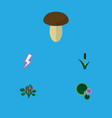 flat icon bio set of cattail lotus lightning and vector image vector image