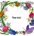 frame of asters narcissus and butterfly vector image