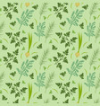 herbs seamless pattern parsley dill razmarin vector image vector image