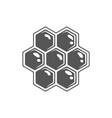 honeycomb isolated on white background vector image
