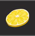 slice of fresh lemon fruit on vector image vector image