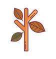 branch leaves hello autumn design icon vector image vector image
