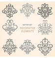 Decorative floral elements vector image vector image