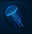 hand drawn sketch isolated jellyfish marine vector image