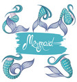 mermaid tails vector image vector image