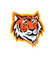 bengal tiger head mascot vector image vector image