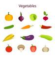 color set of vegetables vector image