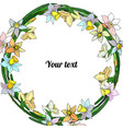 frame of narcissuses vector image