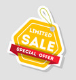 limited sale isolated retail label vector image