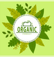 organic eco product poster banner logo sticker vector image vector image