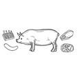 pork meat ham cuts vector image