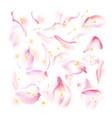 set of pink falling rose and sakura petals vector image vector image