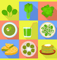 spinach icons set flat style vector image