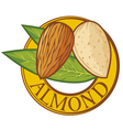 Almond with leaves label vector image