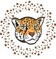 beautiful cartoon leopard vector image vector image