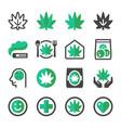 cannabis icon set vector image