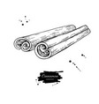 cinnamon stick drawing hand drawn sketch vector image