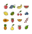 fruits and berries icons vector image vector image