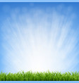 grass with blue sky and border vector image