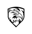 head eagle on shield vector image