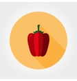 Red bell pepper Icon vector image vector image