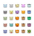 set of cute cat face with emoticons vector image