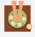 spa foot therapy women feet in bowl with flowers vector image