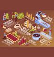 coffee production isometric flowchart vector image vector image