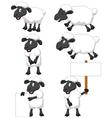 Cute cartoon sheep collection set vector image
