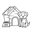 cute funny pet cartoon vector image vector image