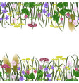 seamless border with seven herbs vector image vector image