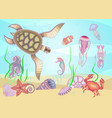 set of marine life for your creativity vector image