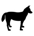 alaskan husky silhouette vector image