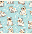 blue bulldog pattern vector image vector image