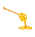cartoon honey dipper with pool of honey vector image