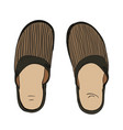 color sketch of slippers vector image