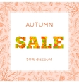 Colorful autumn leaves and sale text vector image vector image