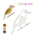 Coloring book bird xenops kids layout for game vector image vector image