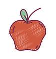 delicious fresh apple organic fruit vector image vector image