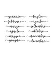 hand lettered months year in italian vector image vector image