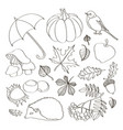 set of autumn symbols vector image vector image