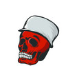 skull monocrome head charactre vector image