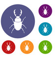 stag beetle icons set vector image vector image