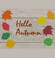 hello autumn calligraphy text on wooden plank vector image vector image