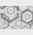 hexagon geometric design with connect dots and vector image vector image